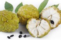 Loại trái cây quen thuộc cực ngon nhưng lại chứa độc tố nguy hiểm