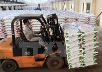 Nhà máy Đạm Phú Mỹ: Sản lượng sắp chạm mốc 10 triệu tấn