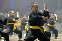 Gần 100 đoàn dự Hội diễn võ thuật cổ truyền Hà Nội mở rộng lần thứ 32