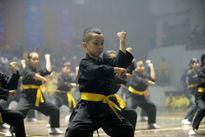 Khai mạc Hội diễn võ thuật cổ truyền Hà Nội mở rộng lần thứ 32