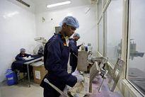 Choáng nghề lấy nước tiểu bò lên ngôi ở Ấn Độ