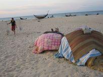 Còn gần 4.000 tấn hải sản tồn kho lạnh sau sự cố Formosa