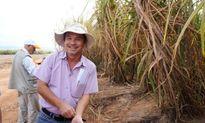 HAGL bán nhà máy đường cho Thành Thành Công?