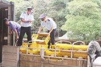 """Xuất khẩu trái cây: """"Mỏ vàng"""" chưa khai phá hết"""