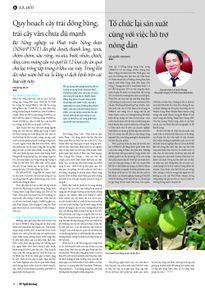 Quy hoạch cây trái đồng bằng, trái cây vẫn chưa đủ mạnh