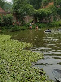 Thương tâm hai bố con tử vong do đuối nước tại Hà Tĩnh
