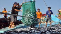 Số liệu mẫu kiểm định cá chết, giảm cụ thể thế nào?
