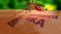Thêm một quốc gia Đông Nam Á xác nhận có người mắc virus Zika