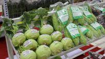Hà Nội: 119 điểm bán sản phẩm nông sản, TPAT, đặc sản vùng miền Bắc Bộ
