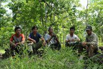 Làng giữ rừng ở Gia Lai