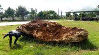 Bắt hòn đá hơn 20 tấn: Huyện cầu cứu tỉnh