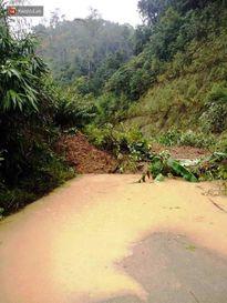 Ảnh hưởng của bão số 4: 1 người mất tích, hàng loạt cây xanh đổ ngã, đường sá sạt lở nghiêm trọng