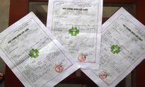 Cấp khống giấy chứng nhận sức khỏe, 11 trạm trưởng y tế bị kỷ luật