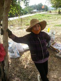 Bình Thuận: Nông dân trắng tay vì mất mùa, chính quyền thờ ơ?