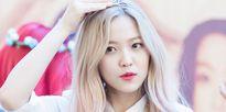 Suzy 'vắng mặt' trong top 20 nữ thần tượng được lesbian Hàn yêu thích