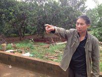 Vụ cưỡng chế xảy ra xô xát ở tỉnh Bình Phước: 2 chiến sĩ công an bị thương, 7 người dân bị tạm giữ