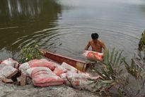 Vụ bà chủ đầm tôm: 5 bảo vệ rừng bị truy tố