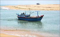 Gia hạn xuất khẩu cát nhiễm mặn tận thu tại cửa Đà Diễn, tỉnh Phú Yên