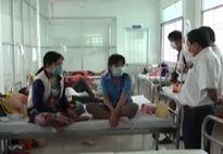 Xử lý ổ dịch cúm A/H1N1 lớn nhất tại Kiên Giang