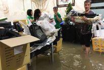 Cận cảnh biệt thự triệu đô của Mr Đàm ngập nặng sau mưa