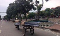Người phụ nữ tử vong ở Mai Lĩnh (Hà Nội) không phải do tôn cứa cổ