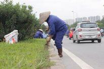 Hà Nội giảm 708 tỷ/năm tiền cắt cỏ: Ai chịu trách nhiệm?