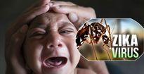 Nguy cơ dịch bệnh do virus Zika tại Việt Nam?