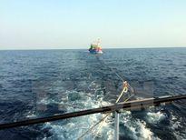 Kêu gọi khẩn cấp cứu nạn các tàu cá bị nạn và trôi dạt trên biển