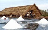 Xử lý các kiến nghị của TCty Lương thực miền Bắc về thu mua tạm trữ muối