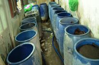Phát hiện một cơ sở ủ giá đỗ bằng hóa chất dán nhãn mác Trung Quốc