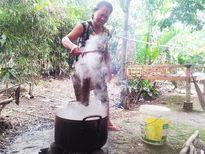 Rộn ràng lễ Sene Dolta của đồng bào Khmer Nam Bộ
