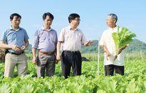 Nối dài những nhịp cầu nông sản
