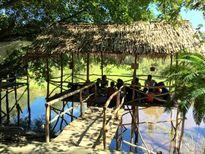 Về An Giang phiêu lưu giữa rừng tràm Trà Sư mùa nước nổi