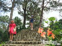 Đến vườn quốc gia Bidoup, tưởng lạc vào thiên đường