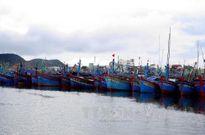 Còn trên 400 tàu cá Quảng Ngãi đang trên biển khi bão số 7 tới gần