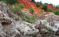 Suối Tiên Bình Thuận: Tiên cảnh nơi trần thế