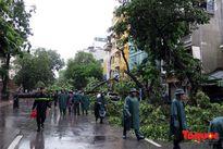 Sở GDĐT Hà Nội triển khai công tác phòng tránh, ứng phó cơn bão số 7