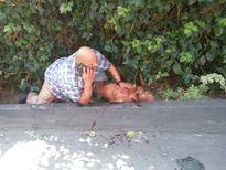 Kẻ đột nhập nhà Miranda Kerr bị bắn 4 phát đạn