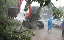 Tin bão số 7: Dừng các hoạt động khai thác cát tại bến bãi