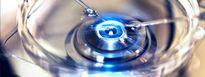 Tạo trứng từ tế bào da trong phòng thí nghiệm - vô sinh sẽ hoàn toàn bị xóa bỏ trong tương lai