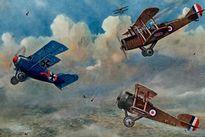 Chiến thuật không chiến xuất sắc của phi công Đức Oswald Boelcke