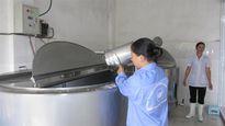 HTX Bò sữa Tân Thông Hội thành công từ sự đổi thay