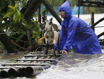Bão Haima quét sạch ruộng đồng Philippines, hướng tới Hồng Kông