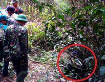 Vụ máy bay rơi ở Vũng Tàu: Chưa xác định được nguyên nhân