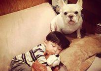 Tình bạn ngọt lịm tim của nhóc tì 'đầu nấm' và cún cưng làm dân mạng điên đảo