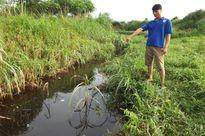 Hà Tĩnh: Dân khốn khổ vì nguồn nước khe Đá 'bỗng nhiên' ô nhiễm nặng