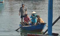 Những 'thân cò' nhọc nhằn chèo đò ở cảng cá Quy Nhơn