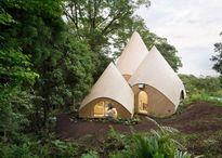 Trải nghiệm với ngôi nhà gỗ đẹp như mơ trong rừng sâu Nhật Bản