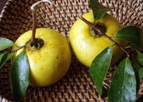 4 loại quả ăn không đúng cách sẽ gây tắc ruột