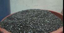 Phát hiện cơ sở sản xuất cà phê trộn đậu nành và hóa chất ở TP Pleiku